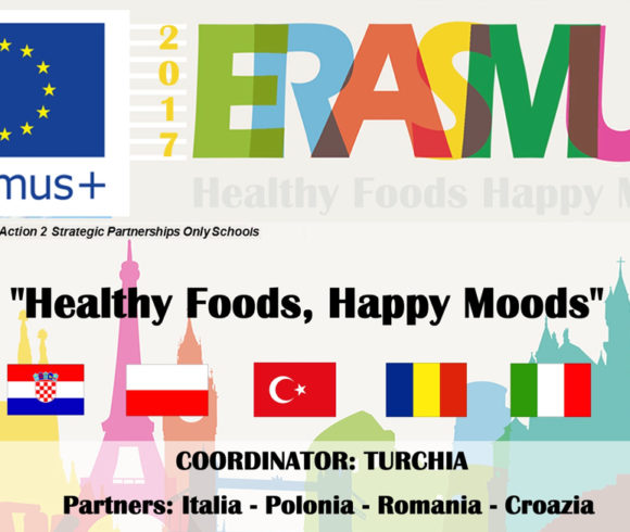 Healthy foods, happy moods 2017-2019