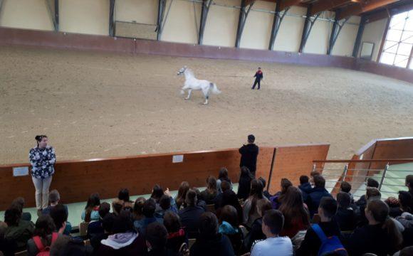 Učenici 7. razreda naše škole posjetili su Đakovo